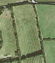 2001 - A flat field