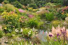 2. The Water Garden in July