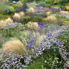 Wildside Garden - Agosto2014 p 1000px